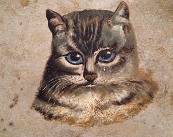 Antique Cat Oil Painting,