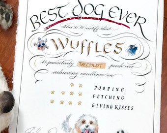 Hand painted Best Dog Ever Certificate