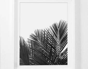 Black and White Botanical Prints, Black and White Bathroom Art, Black and White Nature Prints, Black Palm Prints, Palm Leaves, Palm Art
