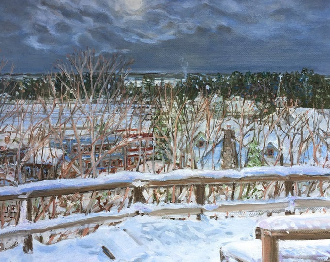 Harbor Springs Snowy Overlook