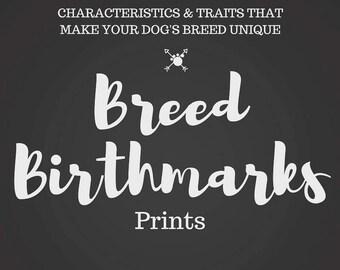 Breed Birthmarks 8x10 Print - Any Breed/Mix