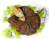 dried fungus -  florist craft, florist decor, terrarium decor, Fairy gardens  Fairy houses supply - Dried mushrooms    # 28
