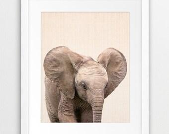 Elephant Print, Baby Animals Wall Art, Safari African Animal Decor, Baby Elephant Photo, Nursery Animal Print, Kids Room Decor Printable Art