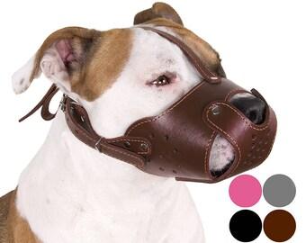 Leather Dog Muzzle Pit Bull Pitbull AmStaff Staffordshire Terrier Genuine Secure Basket