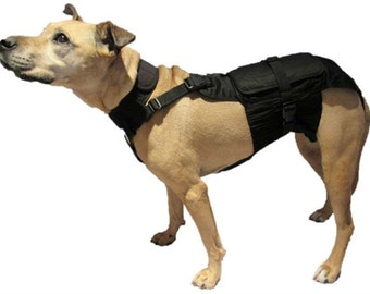 Medium Dog Diaper Wrap with Neck and Extender Package 17 pounds to 40 pounds
