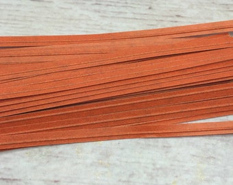 Orange Twist Tie 100pc
