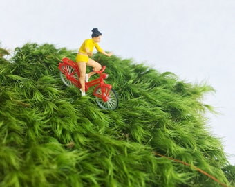 No Hands Terrarium Figurine, Moss Terrarium Figurine, Terrarium Accessory, DIY Terrarium kit, Bike Ride