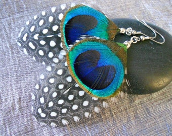 Natural Peacock feather and Guinea fowl feather earrings.