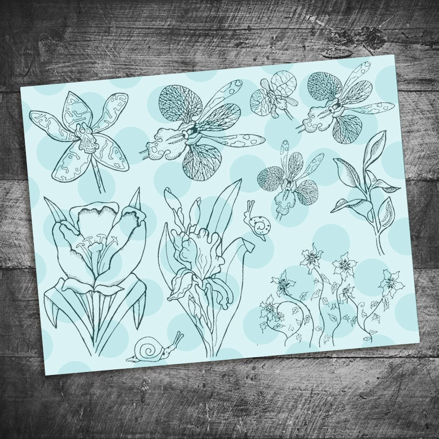 Flower Stamps Tulip Stamps Iris Stamps Orchid Stamps