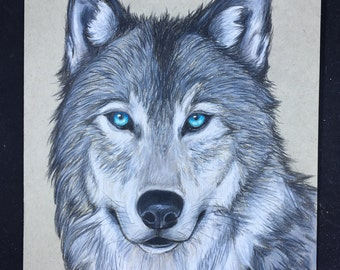 Prismacolor Wolf Drawing