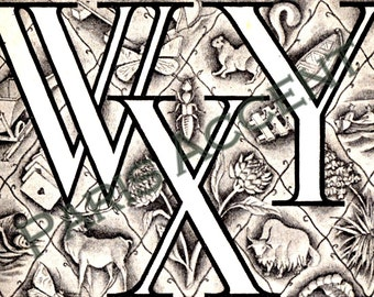 Instant digital download of Letter 'WXY' from 'Nouveau Petit Larousse Illustré' a French Encyclopedia. Great for arts and crafts! Dated 1952