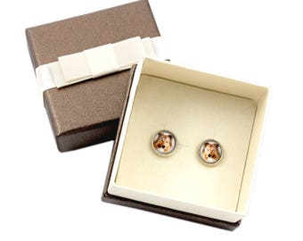 Collie. Pet in your ear. Earrings with box. Photojewelry. Handmade.