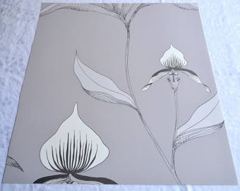Wallpaper - Cole and Son  Sample Sheet  - 19 x 17  White Orchid on Grey Taupe