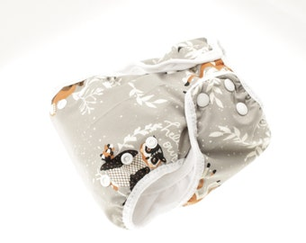 AI2 One size cloth diaper for prefolds or inserts