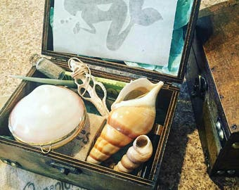50% Off Shell Pipes, Treasure Boxes and Accessories (Castaway Defects, Each Piece Sold Separately)