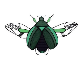 Beetle Flight