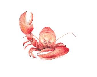 Lobster Ocean Nautical Beach Limited Edition Print 8.5x11 Watercolor