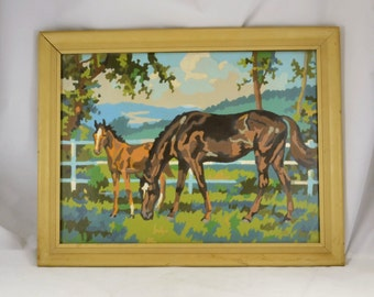 Horse Foal Paint by Number Vintage Mid Century 1960s - Framed under Glass