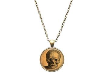 Skull necklace VintageAnatomy pendant Medical jewelry