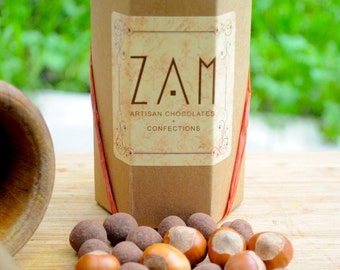 Chocolate covered Hazelnuts, Artisan candy, healthy nut and chocolate snack, 8 oz dark or milk chocolate covered nut, gluten free