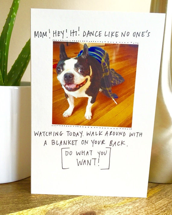 Mother's Day Card funny, funny mothers day card, card for mom, Unique Mother's Day Card, dogs, Mother's Day, Sidesandwich ,Greeting Card,