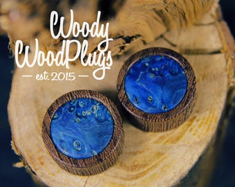 Wooden plugs with dark blue maple inlay / wood  plugs / ear plugs  14 mm plugs / vegan plugs /40 mm plugs / 70 mm plugs