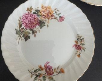 Seven Lovely Adderley Chrysanthemum bone china dessert plates