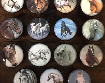 1.5 inch horses cabinet knobs drawer pulls black white brown bay chestnut wild