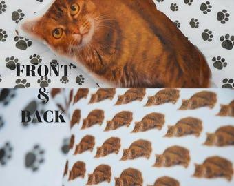 Student Gift - Custom Pet Photo Pillow - Dorm Room Gift - College Student Gift - Photo Dog Pillow - Pet Portrait Pillow - Custom Pillow