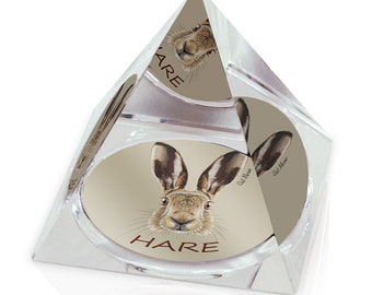 "Hare Head Illustration Animal Art 2"" Crystal Pyramid Paperweight"