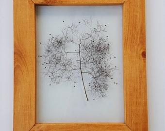 Purple Smoke Bush - Transparency Collection - Pressed Flower Wall Decor