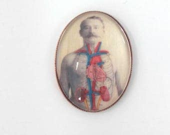 Embroidered handmade anatomical illustration 1900 pin