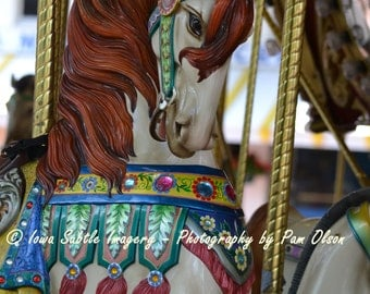 Carousel Collector Etsy