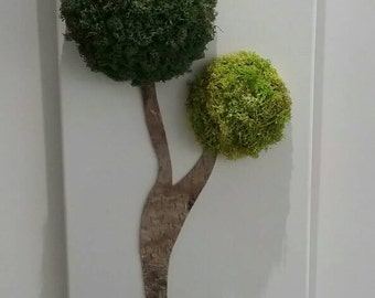 Wall table FRAME PLANT STABILIZED tree Topiary