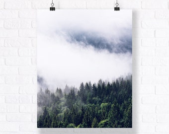 Everygreen Forest. High Quality Atmospheric Nature Print. Combine with Other Prints to Create Your Very Unique Gallery Wall.
