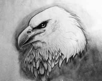Original Custom Pet Portrait Drawing