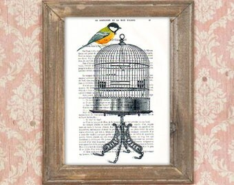 Birdcage print , bird on birdcage,bird print, bird  artwork, birdcage art, bithday print, birdcage poster, bird painting, free like a bird