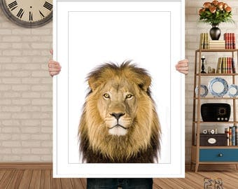 Lion Print, Lion Wall Art, Safari Prints, Kids Wall Art, Animal Art, Lion Photo, Lion Poster, Nursery Decor, Baby Shower Print, Lion