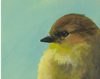 When I Bet On Cockfights, I'm Doing It Ironically 5 x 5 Art Print - Animal - Bird - Gift - Giclee - Mincing Mockingbird