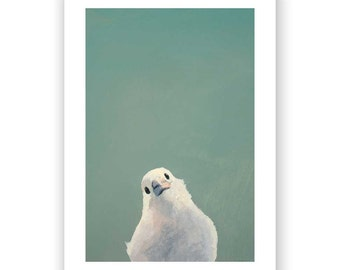 Finding The Courage To Endure by Posting Banal Respsonses To The Banal Posts Of Online Friends - 7 x 5 bird art print
