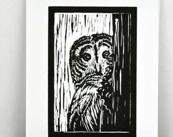 Original Linocut Print Barred Owl