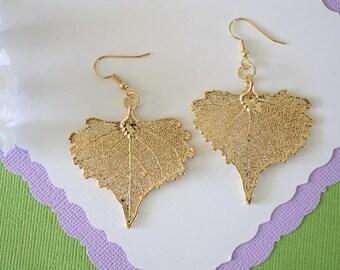 Gold Leaf Earrings, Real Cottonwood Leaf, Real Leaf Earrings, Heart Shaped Leaf, 24kt Gold, Nature, LESM170