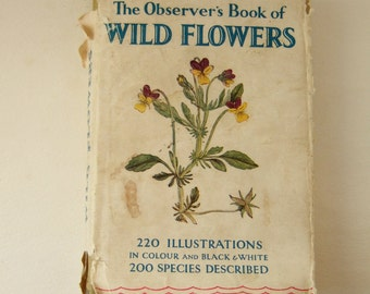 The Observer's Book of Wild Flowers - Small Vintage Hardback with Lovely Illustrations of British Flowers