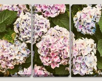 Set of 3 Canvas Art, Hydrangeas, Soft Coloring, Flower Photography, Botanical, Lavender, Wall Panels, Nyhavn, Copenhagen, Denmark, Danish