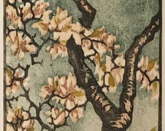 Original Woodblock Print Tulip Magnolia - OOAK - Matted Artist Proof Moku Hanga Fine Art Block Print Tree