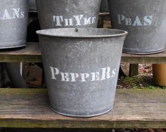 Vintage metal Bucket PEPPERS planting  galvanized pails Rustic Barn Garden plant herb bucket Planters Storage Industrial Cottage