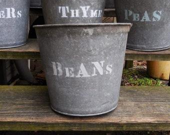Vintage metal Bucket BEANS planting  galvanized pails Rustic Barn Garden plant herb bucket Planters Storage Industrial Cottage