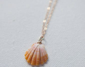 Simple & Dainty Mini Sunrise Shell Necklace