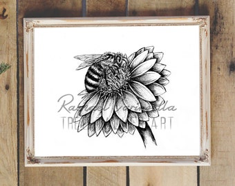 Honey Bee Flower Art- Giclee Fine Art Print - Pen and Ink Illustration - Honey Bee Illustration