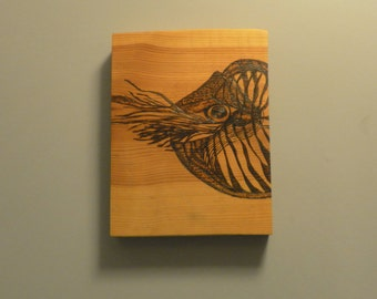 Nautilus on pine pyrography portrait wall art from the ocean